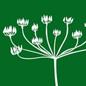 陕西嘉禾植物化工有限责任公司实验室